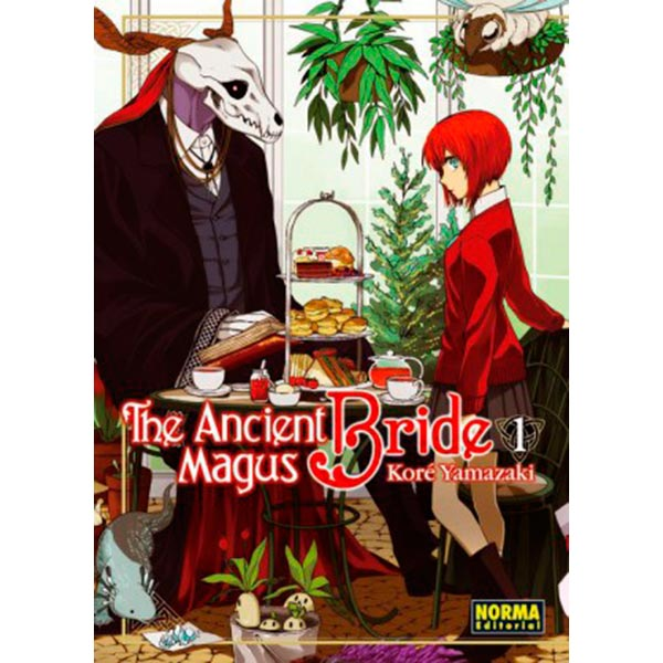 Ancient Magus Bride 01